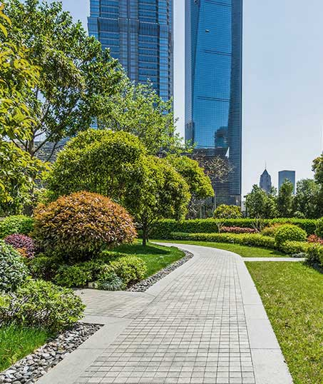 True Vine Landscape Management, Inc. Landscaping