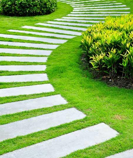 True Vine Landscape Management, Inc. Landscape Construction