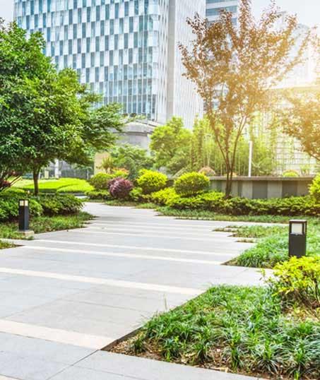 True Vine Landscape Management, Inc. Commercial Landscaping