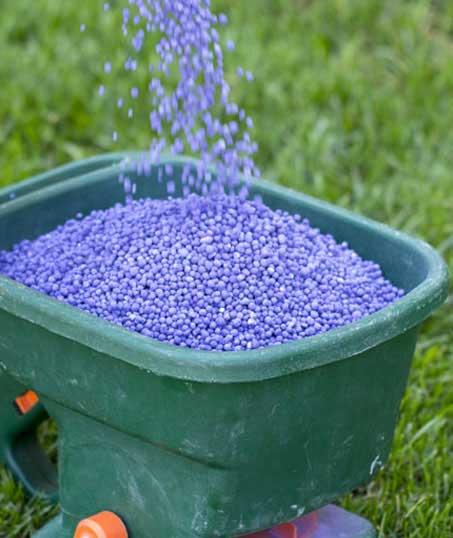 True Vine Landscape Management, Inc. Lawn Fertilization