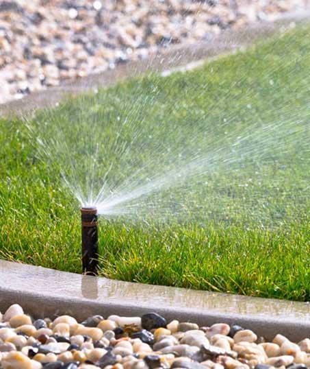 True Vine Landscape Management, Inc. Sprinkler System Repairs