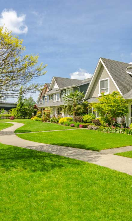 True Vine Landscape Management, Inc. Residential Lawn Care