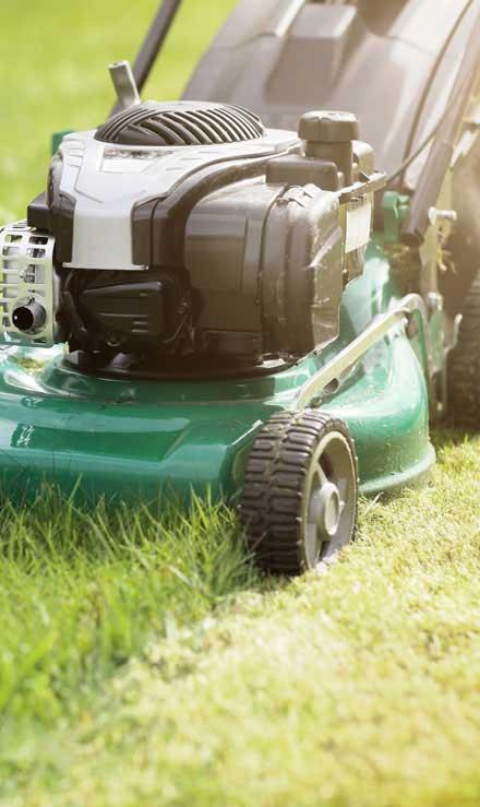 True Vine Landscape Management, Inc. Residential Lawn Mowing