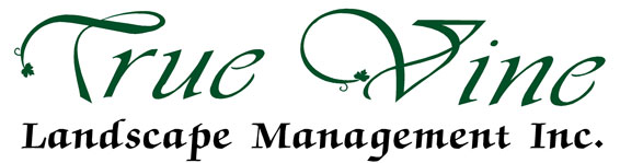 True Vine Landscape Management, Inc. Logo